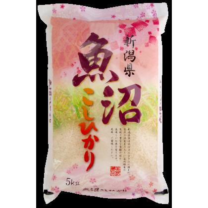 KOSHIHIKARI UONUMA 5kg
